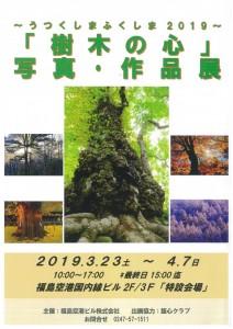 323樹木の心
