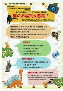 11ぴきの猫3
