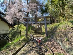 0403田村神社_200403_0010